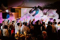 houston-museum-of-natural-science-wedding-at-hmns